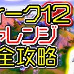 【シーズン4】ウィーク12 チャレンジ完全攻略「エクストラバガンザウィーク2」「オーバータイムチャレンジ」「場所 解説」「フォートナイト」