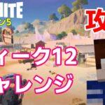 【フォートナイトシーズン5】#53 ウィーク12チャレンジ攻略!【ダイのゲームワールド】【初心者フォートナイト】