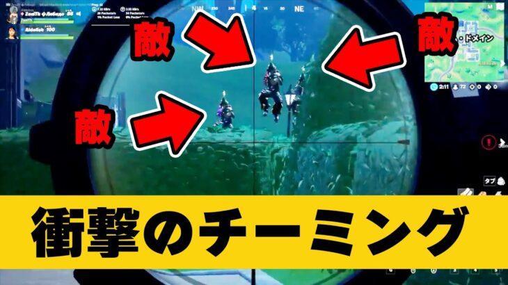 世界が恐れる極悪チーミング10選【フォートナイト】