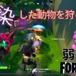 【クエスト攻略】感染した動物を狩る【フォートナイト/Fortnite】