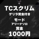 ゲリラ賞金付き アリーナソロ カスタム 500円×2試合【フォートナイト/Fortnite】
