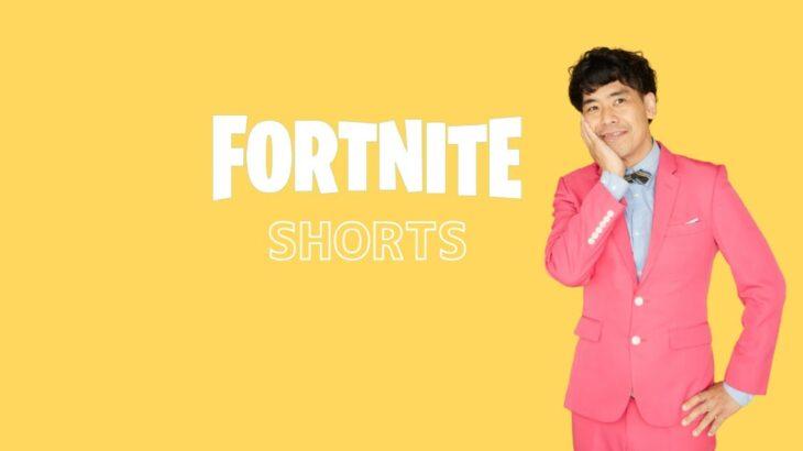 【フォートナイト】きたぁ!シーズン8初!!ソロでこそこそビクロイ!!#4【 @ギフト矢野チャンネル  】#shorts